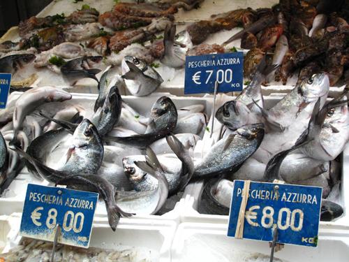Stiff fresh fish
