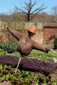 Kitchen Garden Scarecrow