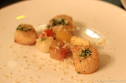St Jacque Scallops with Smoked Turnips - Vivant Table, Paris