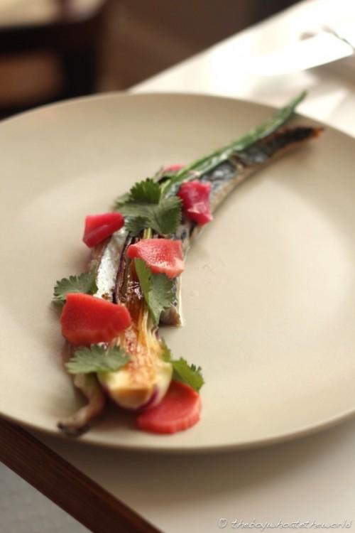 Mackerel Spring Onion Rhubarb Coriander