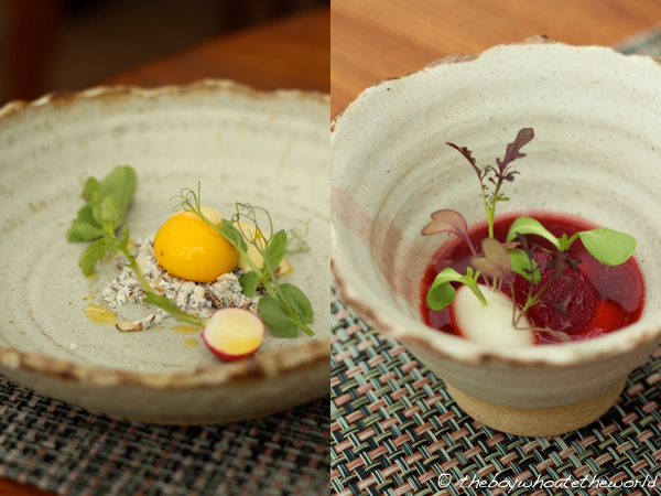 L Enclume - Cod Yolk - Beetroot Broth