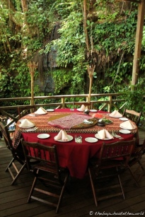 Rainforest dining