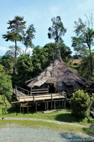 Chief's hut