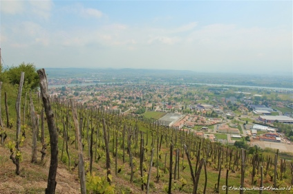 View of Tournon from the hills of St Joseph