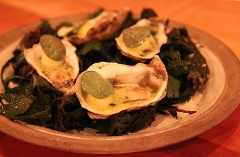 Oysters, Smoked Beef Fat & Apple